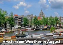 August weather Amsterdam
