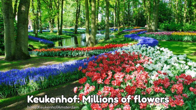 Keukenhof Netherlands