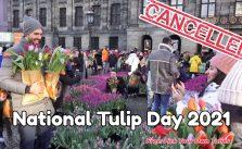Amsterdam National Tulip Day 2021