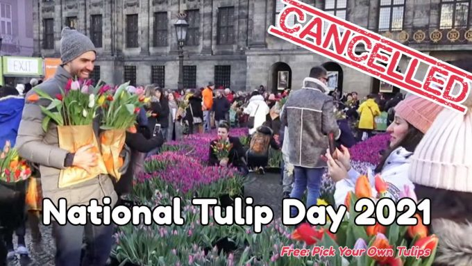 Amsterdam National Tulip Day 2021