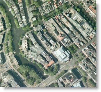 Amsterdam city of trees